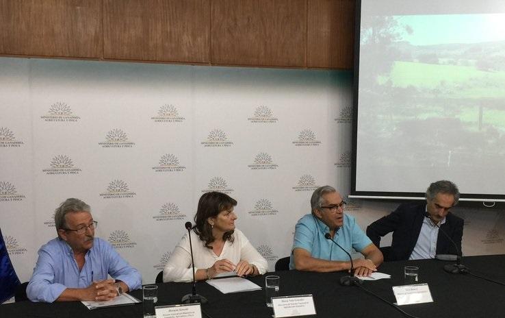 MGAP entregará caravanas en sus oficinas  ante el incumplimiento del Correo Uruguayo