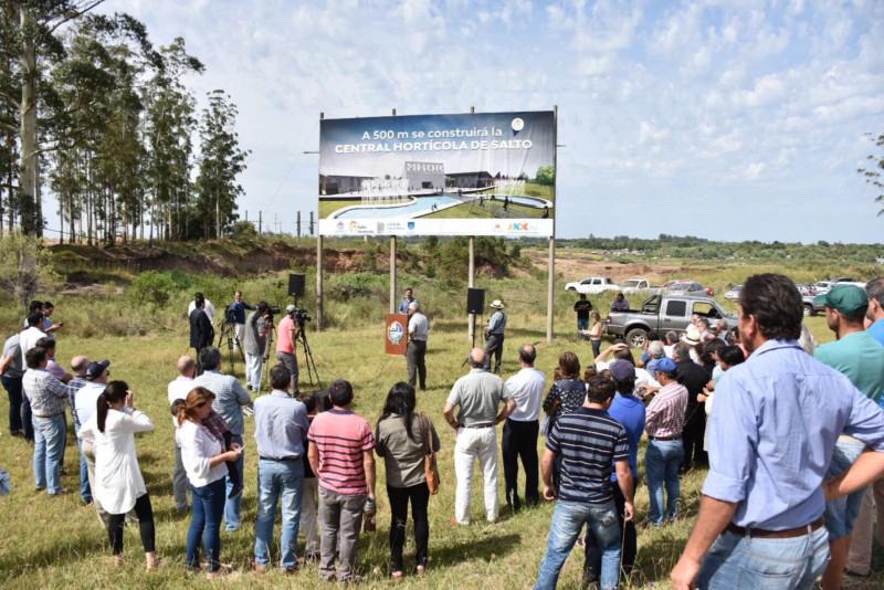 Antes de fin de mes se presentarán los pliegos para la construcción de la Central Hortícola del Norte