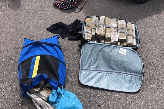 Incautan 50 kilos de marihuana en Treinta y Tres; buscaban trasladar la droga de Brasil a Argentina vía Uruguay